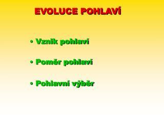 EVOLUCE POHLAVÍ