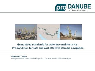 What is Pro Danube International?