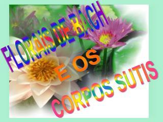 CORPOS SUTIS