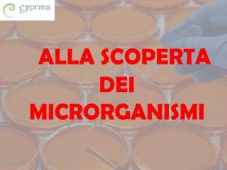 ALLA SCOPERTA DEI  MICRORGANISMI