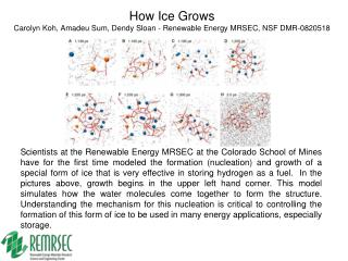 How Ice Grows Carolyn Koh, Amadeu Sum, Dendy Sloan - Renewable Energy MRSEC, NSF DMR-0820518