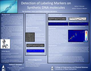 Detection of Labeling Markers on Synthetic DNA molecules