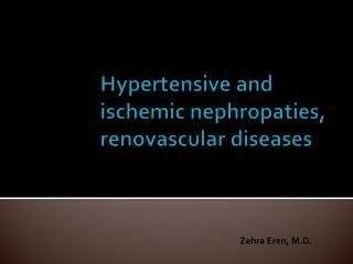 Hypertensive and ischemic nephropaties, renovascular diseases