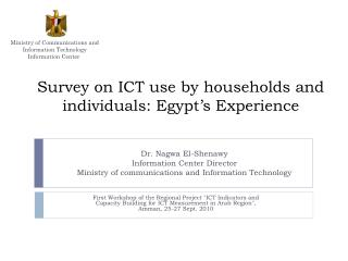 Survey on ICT use by households and individuals: Egypt's Experience