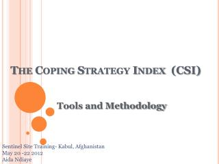 The Coping Strategy Index  (CSI)