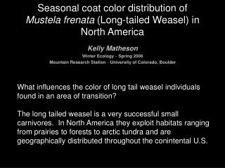 Seasonal coat color distribution of  Mustela frenata  (Long-tailed Weasel) in North America