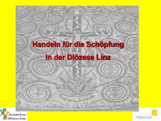 Handeln für die Schöpfung in der Diözese Linz