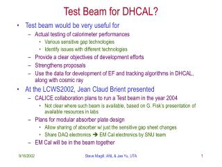 Test Beam for DHCAL?