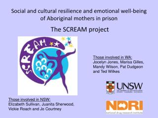 Social and cultural resilience and emotional well-being of Aboriginal mothers in prison