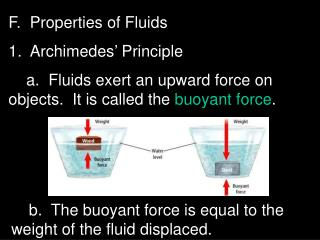 F.  Properties of Fluids 1.  Archimedes  Principle     a.  Fluids exert an upward force on objects.  It is called the bu