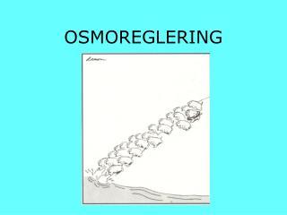 OSMOREGLERING