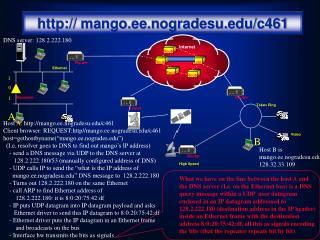 mango.ee.nogradesu/c461