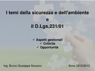 I temi della sicurezza e dell ambiente  e il D.Lgs.231