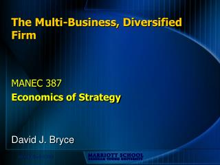The Multi-Business, Diversified Firm