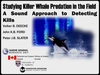 Studying Killer Whale Predation in the Field  A Sound Approach to Detecting Kills
