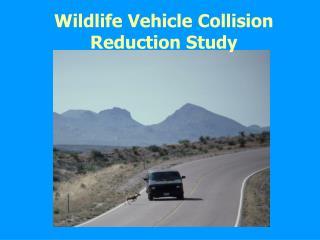 Wildlife Vehicle Collision Reduction Study