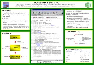 MOUSE DATA IN SWISS-PROT
