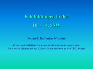 Fehlbildungen in der  10. - 14. SSW