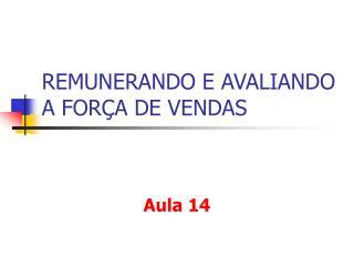 REMUNERANDO E AVALIANDO A FORÇA DE VENDAS