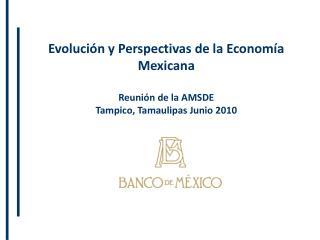 Evolución y Perspectivas de la Economía Mexicana Reunión de la AMSDE