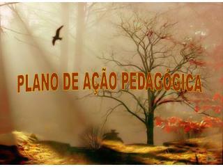 PLANO DE AÇÃO PEDAGÓGICA