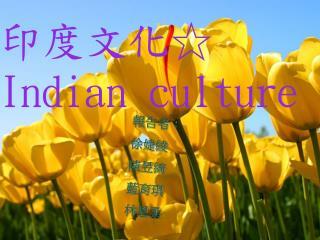 印度文化☆ Indian culture