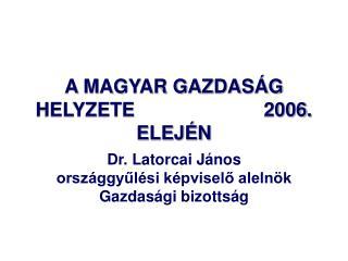 A MAGYAR GAZDASÁG HELYZETE                        2006. ELEJÉN