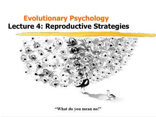 Evolutionary Psychology Lecture 4: Reproductive Strategies