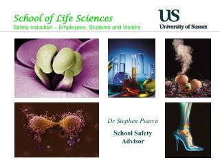 School of  Life Sciences Safety Induction – Employees, Students and Visitors