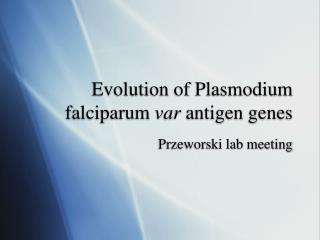 Evolution of Plasmodium falciparum  var  antigen genes