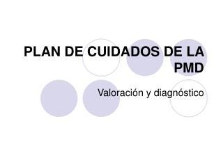 PLAN DE CUIDADOS DE LA PMD