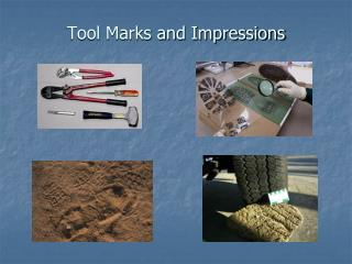 Tool Marks and Impressions