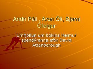 Andri Páll , Aron Óli, Bjarni Ófeigur