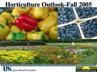 Horticulture Outlook-Fall 2005