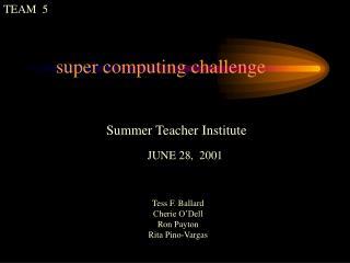 Summer Teacher Institute