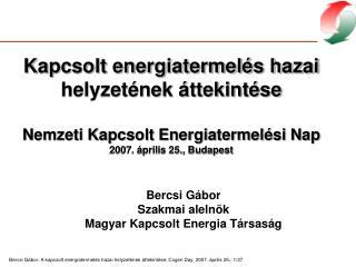 Bercsi Gábor Szakmai alelnök Magyar Kapcsolt Energia Társaság