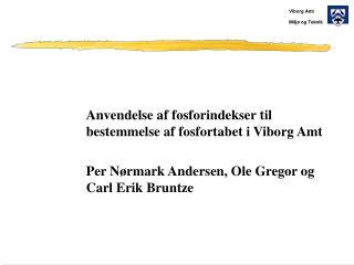 Anvendelse af fosforindekser til bestemmelse af fosfortabet i Viborg Amt