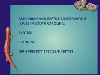 AMPHIBIAN AND REPTILE CONSERVATION ISSUES IN SOUTH CAROLINA: EXOTICS PLANNING