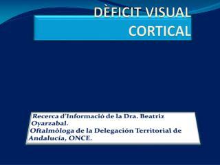 DÈFICIT VISUAL CORTICAL