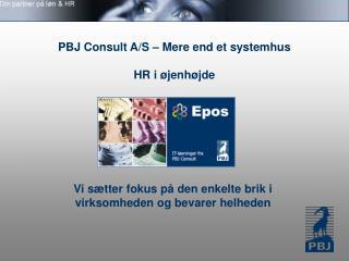 PBJ Consult A/S – Mere end et systemhus HR i øjenhøjde