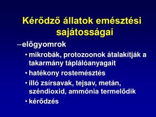 K rodzo  llatok em szt si saj toss gai elogyomrok mikrob k, protozoonok  talak tj k a takarm ny t pl l anyagait hat kony