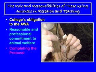 The Role and Responsibilities of Those Using Animals in Research and Teaching