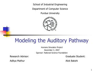 Modeling the Auditory Pathway
