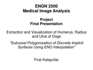 ENGN 2500 Medical Image Analysis Project Final Presentation