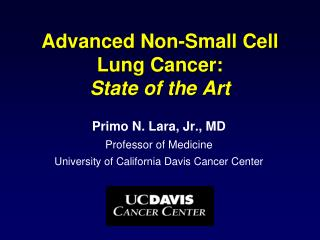 Advanced Non-Small Cell  Lung Cancer:  State of the Art