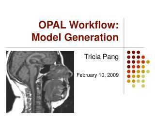 OPAL Workflow:  Model Generation