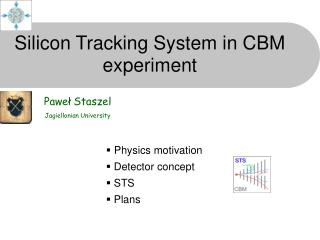 Silicon Tracking System in CBM experiment