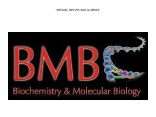 BMB Logo, Right DNA,  Black  Background