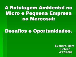 A Rotulagem Ambiental na Micro e Pequena Empresa no Mercosul: Desafios e Oportunidades.