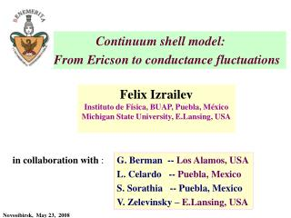 Continuum shell model: From Ericson to conductance fluctuations
